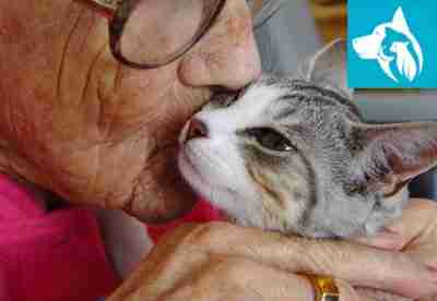 Seniors Emotional Support Animal