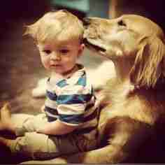 dog hugging kid