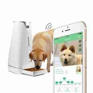 Technology Hoison Automatic Pet Feeder