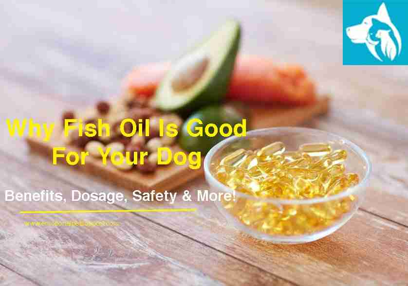 fish-oil-benefits