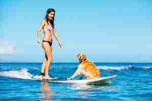 surfing-dog-fun