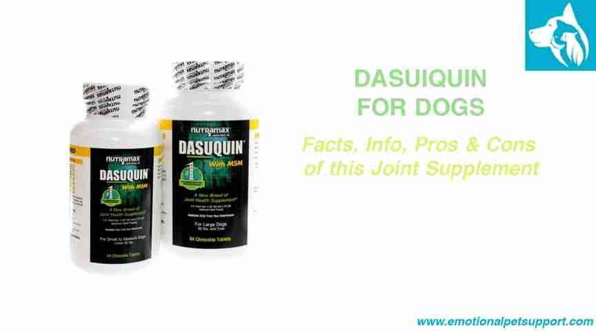 Dasuquin-Dog-Joint-Supplement