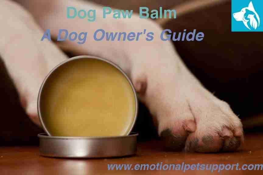 Dog Paw Balm