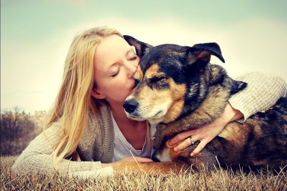 dog and human hug